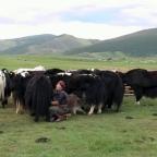Mujer, género y familia en la sociedad nómada mongol