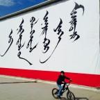 Sincretización de morfemas en mongol