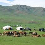¿Dónde están los mongoles?